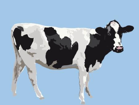 Illustration Vache Viltain